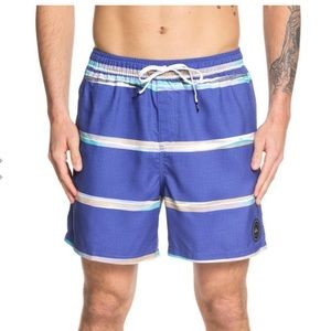 Quiksilver men's Dunes Stripes Volley Board Shorts